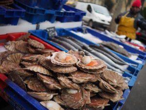 Fresh Local Seafood and Shellfish displayed in Paris Market